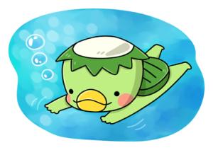 カッパ水泳